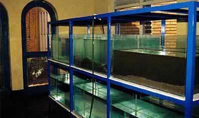 New aquaria